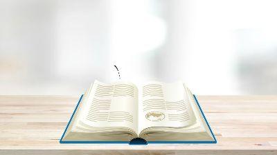 Okuduklarımızla İlgili Çıkarımlar Yapalım