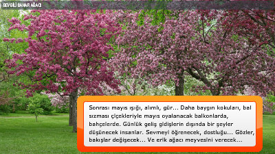 Sevgili Bahar Ağacı