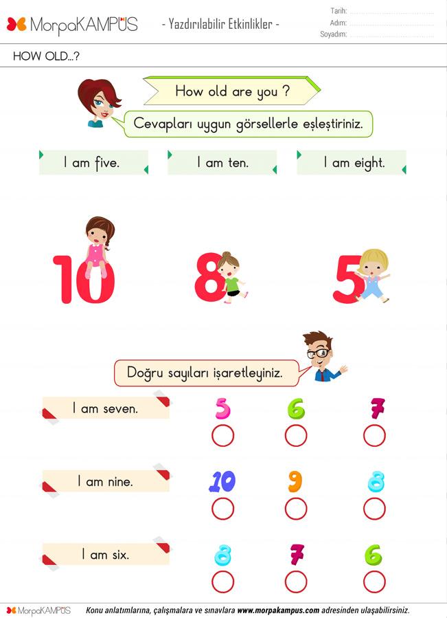 2. Sınıf İngilizce Ödevi