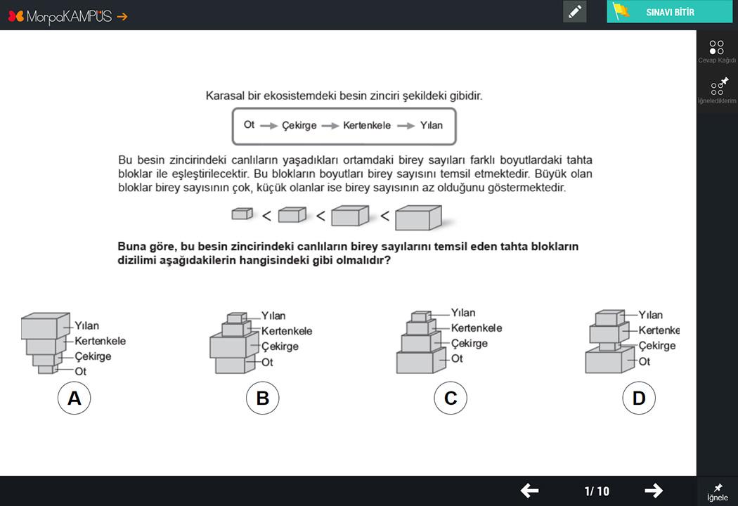 8. Sınıf TEOG Sosyal Bilgiler Testleri